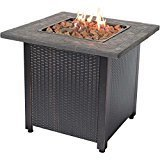 Endless Summer LP Gas Outdoor Fireplace