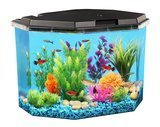 Koller Products AquaView 6.5 Gal. Fish Tank