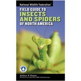 National Wildlife Federation. Field Guide to Insects and Spiders & Related Species of North America